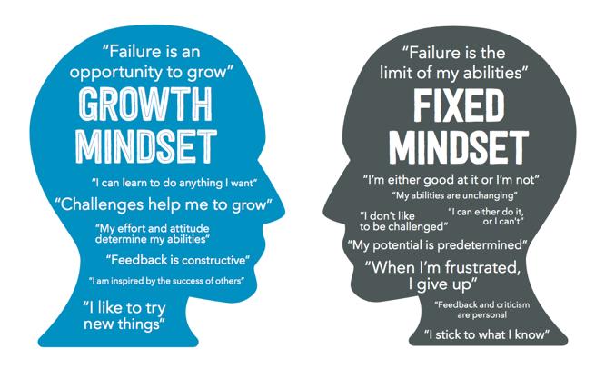 Mindset: Growth versus a Start-Up Mindset