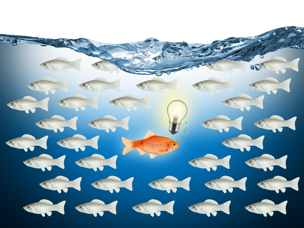 the entrepreneur mindset swims in a completely different direction to most.