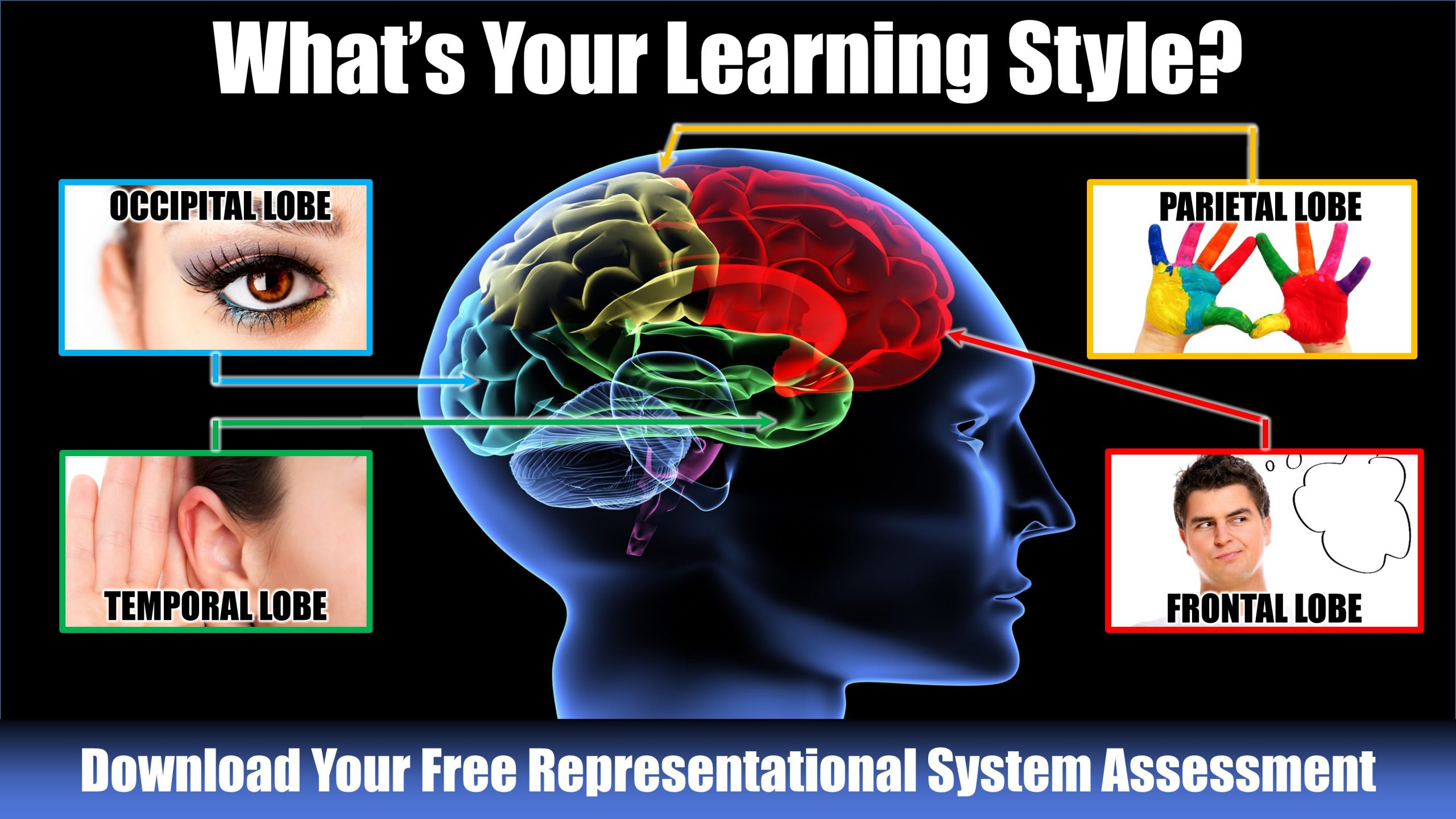 Learning Styles: Why some children fall behind in school